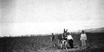 Desde Sabiñán hasta Guadalajara